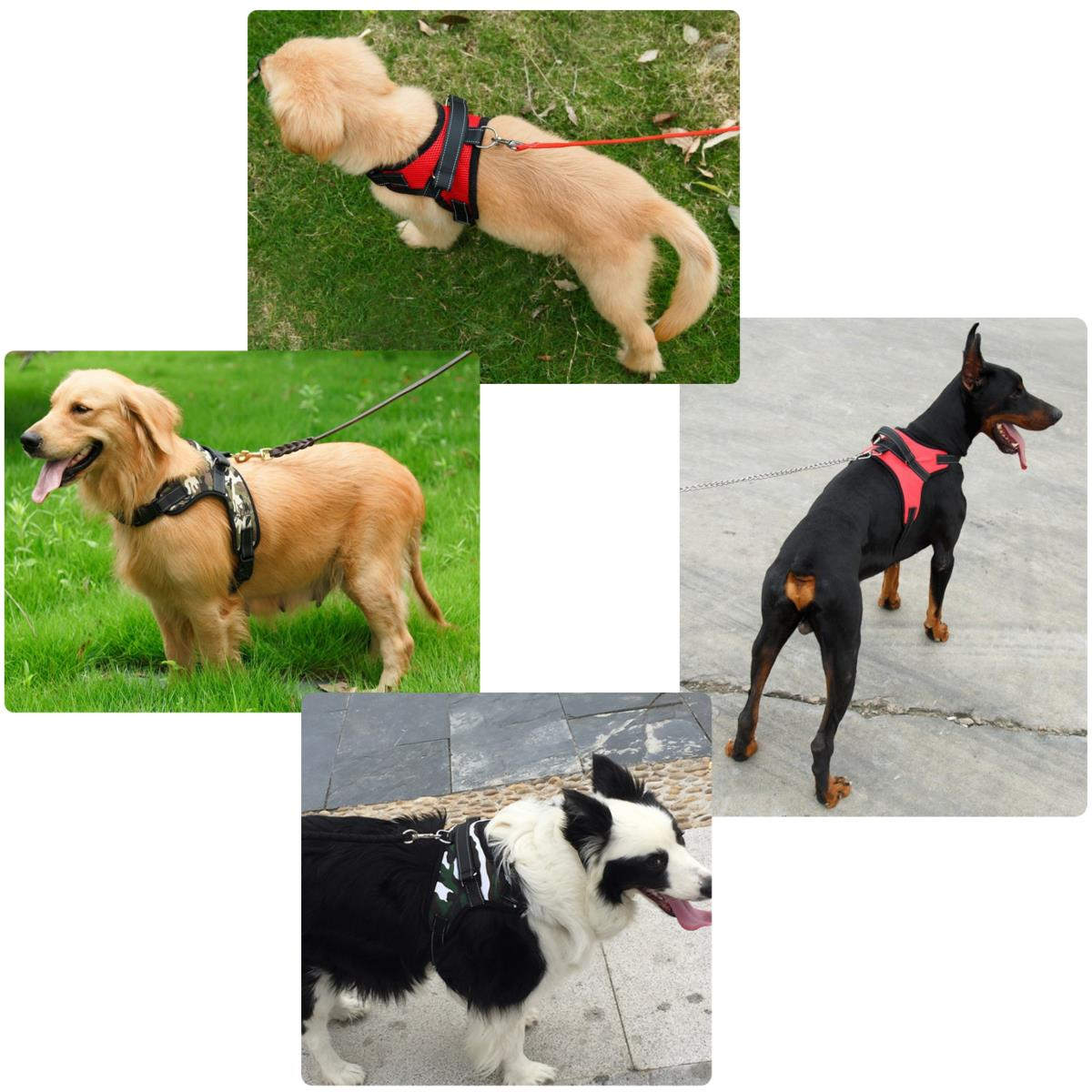 Pet Control Harness Adjustable Dog & Cat Soft Mesh Walk