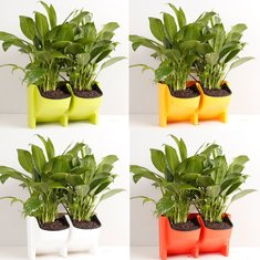 2-Pocket Vertical Wall Planter Self Watering Hanging Flower Pot Garden Decoration