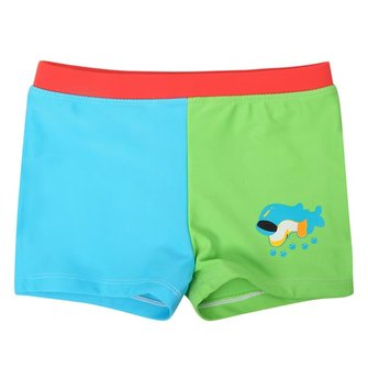 Baby Boys Kid Dolphin Cartoon Style Blue & Green Swimming Trunks